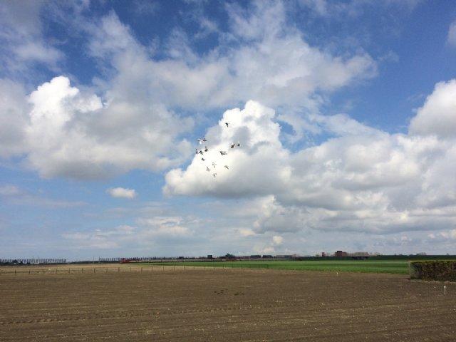 Weblog Arjan van Gent 10-04-2016