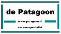 Patagoon