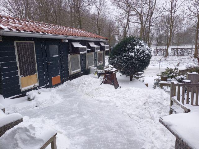 Weblog Arjan van Gent de eerste weken van 2021